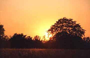 Západ slunce nad Heřmanovicemi